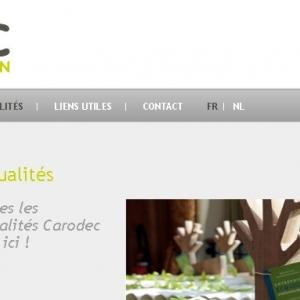 Page d'actualité du site web Carodec