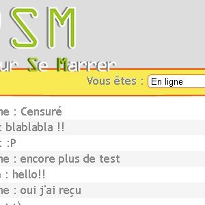 Site web Chat'PSM version ordinateur