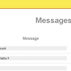 Partie administration du site Chat'PSM